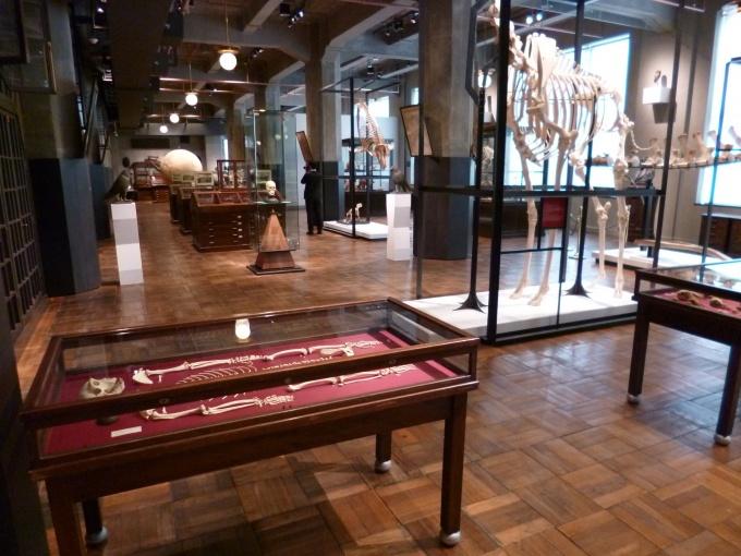 JPタワー学術文化総合ミュージアム「インターメディアテク」。床や柱は旧東京中央郵便局舎のものを使用している