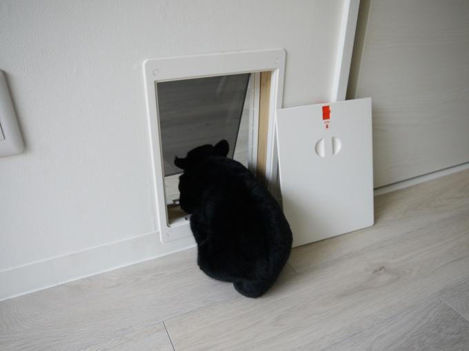 くぐり戸を2ヵ所用意。ドアを開閉することなく、猫が家中を移動できる
