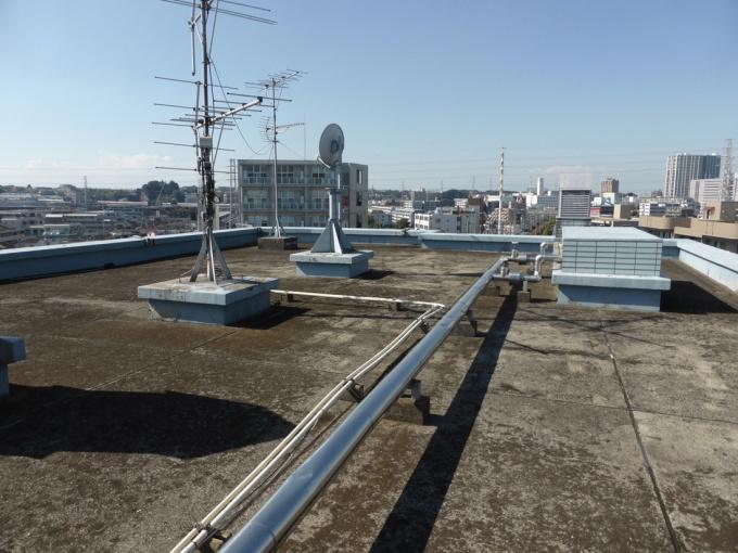 「セシーズイシイ5」の屋上。今はこのような状態だが、ゆくゆくはフェンスを張り、床を整え、入居者と活用できるスペースへと刷新させる予定だという