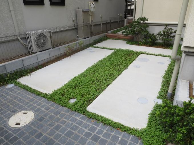 ほぼすべての住戸の外構は緑で覆われている。カーポートや敷地端部などには、メンテナンスフリーのダイカンドラが植えられる。保水性にも優れる