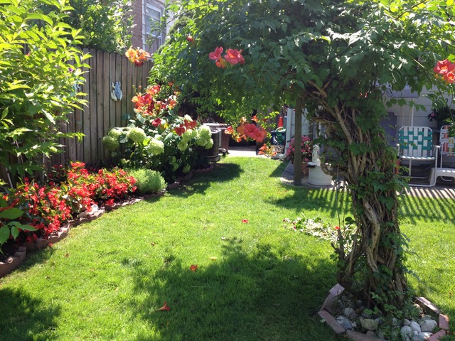 冬に家を売る時は庭が茶色く枯れいいイメージを想像しがたい。花が咲いている季節の写真を写真立てに入れて飾って置きたい(イリノイ州シカゴ市)